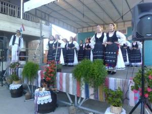"""Dragalić u pjesmi i plesu"""